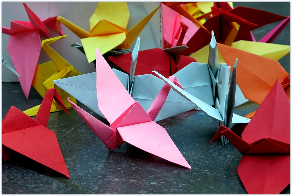 Origami for Life Charles Kaisin